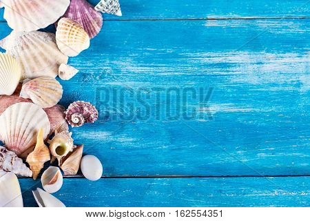 shells on the old blue wooden boards. marine still life. time to rest concept of vacation relaxation technology