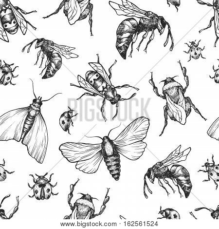 Insects Pattern.