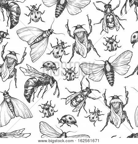 Hand Drawn Vector Pattern With Insects In Different Poses.
