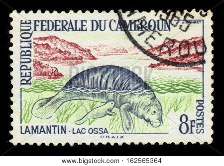 Cameroon - CIRCA 1962: A stamp printed in Cameroon shows African Manatee (Trichechus manatus senegalensis), circa 1962
