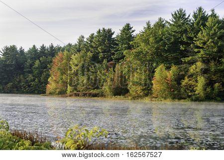 New England autumn foliage along edge of pond