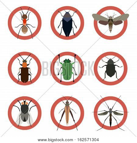Pest insects control icons. Collection danger insect. Vector illustration