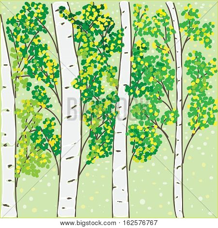 beautiful autumn birch grove for your design