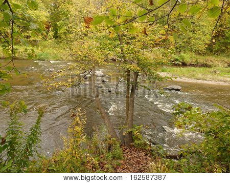 A river flowing over some rocks in a State Park.