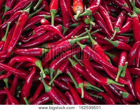 Close up of Red Chili pepper. Chili as a background