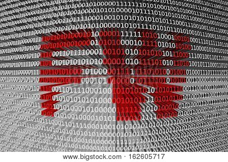 FW in the form of binary code, 3D illustration