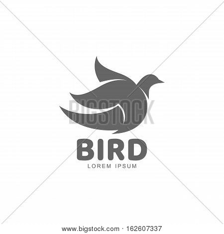 Stylized swallow silhouette logo template, vector illustration isolated on white background. Abstract black and white swallow logo design as symbol of hope, peace, spring, care