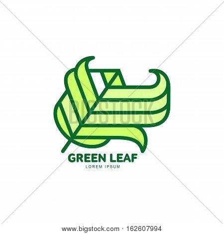 Pointed green leaf growing up logo template, vector illustration isolated on white background. Green leaf logotype template with text on right, environment, nature, growth, development concept