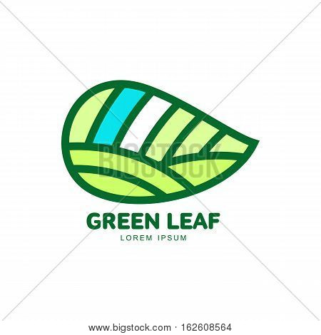 Horizontal pointed green leaf logo template, vector illustration isolated on white background. Green leaf horizontal logotype template with text below, environment, nature, growth, development concept