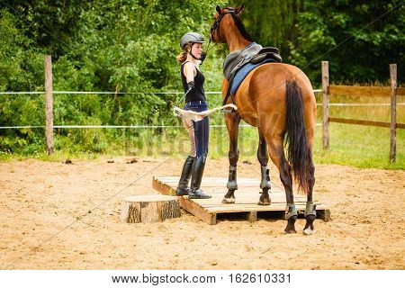 Taking care of animals horsemanship equine concept. Jockey young woman in helmet getting horse ready for ride on countryside.