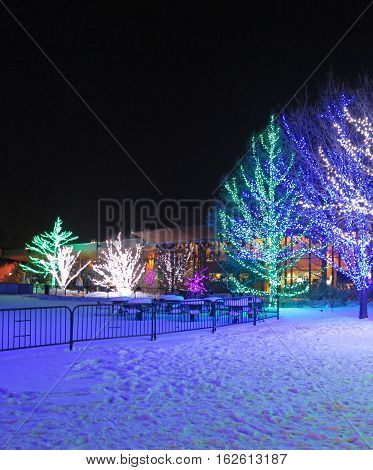 Colorful holiday light show at Morton Arboretum in winter at Lisle, Illinois