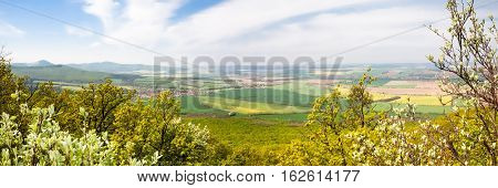 View from green forest in the foreground on distant fields and meadows during a sunny spring morning