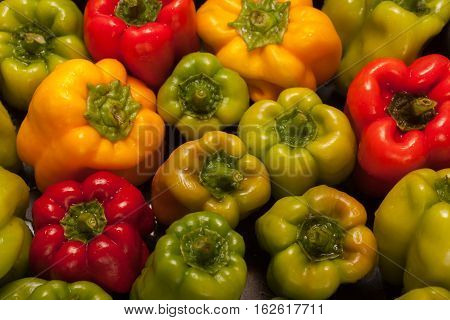 Fresh vegetables - Bell peppers red green and yellow bell peppers