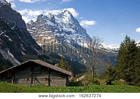 View of Eiger mountain from livestock shed in the Grindelwald Valley
