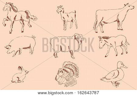 Pets Farm. Pencil sketch by hand. Vintage colors. Vector image