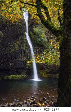 Horsetail Falls In The Columbia River Gorge With Fall Color In Autumn