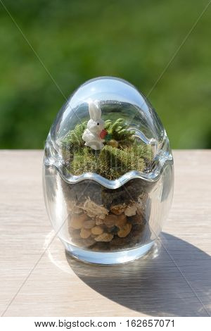 Terrarium garden in small egg glass decor with moss and little rabbit.