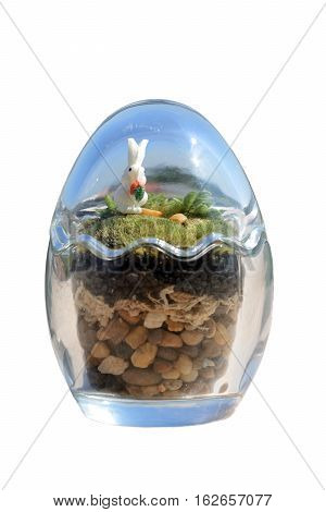 Terrarium garden in small egg glass decor with moss and little rabbit on white background.