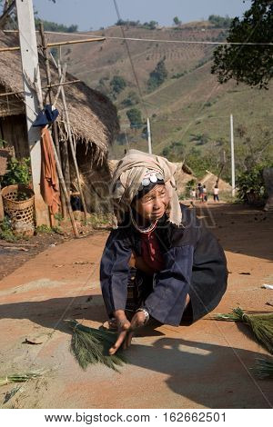 Mae Salong, Thailand - January 28, 2008 :  In the province of Mae Salong, north of Thailand.  An old woman of the Akha tribe, dried clumps of herbs, which would be used to make the roof of houses in bamboo.