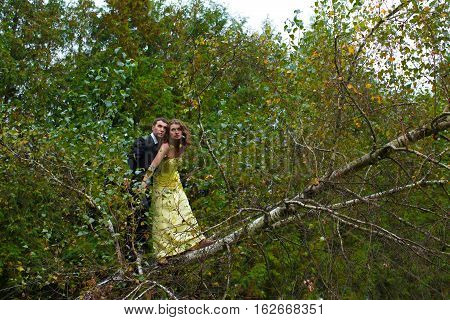 Couple Stands Carefully On The Tree's Branch