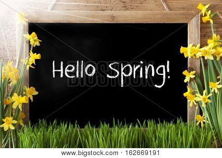 Blackboard With English Text Hello Spring. Sunny Spring Flowers Nacissus Or Daffodil With Grass. Rustic Aged Wooden Background.