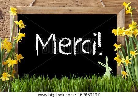 Blackboard With French Text Merci Means Thank You. Spring Flowers Nacissus Or Daffodil With Grass And Easter Bunny. Rustic Aged Wooden Background.