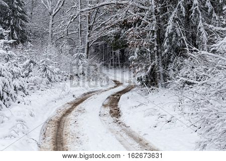 Road At White Winter Landscape In The Forest.