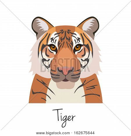 vector tiger head isolated. Flat style, cartoon object. poster banner print advertising, design element. Wild animal, cat