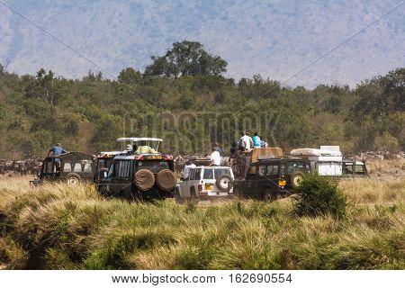 Photo safari in Africa. Safari in Masai Mara, Kenya