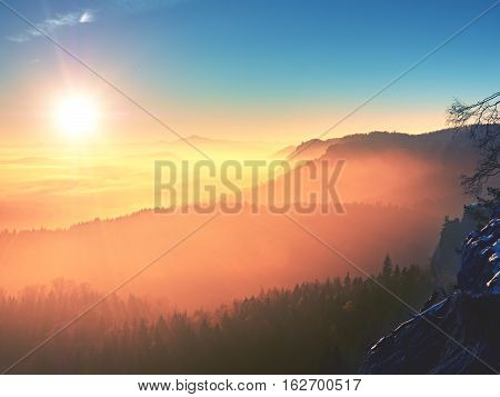 Marvelous Daybreak Above Valley Full Of Colorful Mist. Peaks Of High Trees
