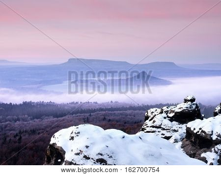 Cocks Covered With Fresh Powder Snow, Misty Valley. Stony Rock
