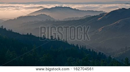 Bolinas Ridge is a north-south ridge in southwestern Marin County, California.