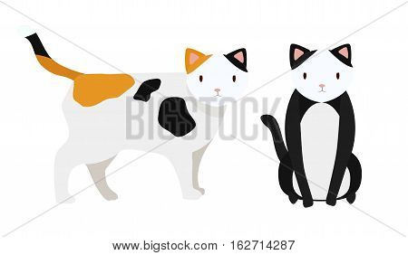 Cat cats full length grapnel puss grapple pussycat tomcat male female gib muzzle standing sitting flat design art sign signboard poster icon Vector beautiful closeup horizontal animal illustration