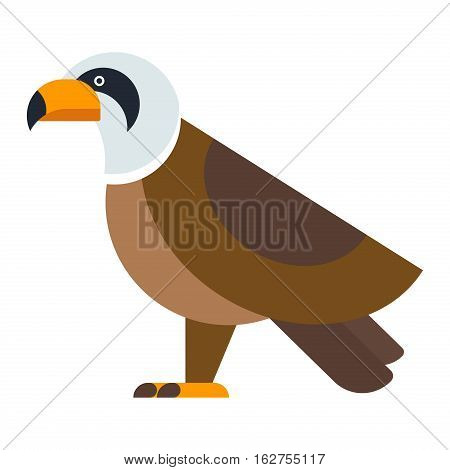 Eagle bird, brown hawk and flying wild vector. Freedom national american symbol falcon. North American bald raptor wildlife and predator cartoon illustration.