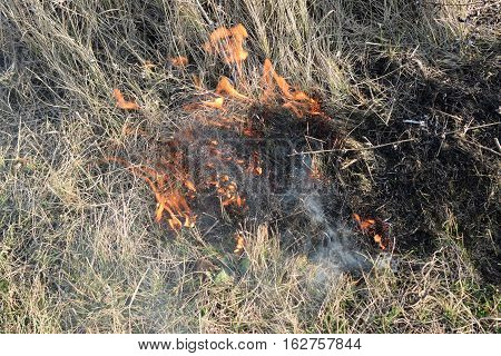 Burning Dry Grass And Reeds. Cleaning The Fields And Ditches Of The Thickets Of Dry Grass