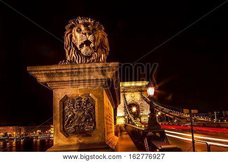 Chain Bridge Lion Danube River Budapest Hungary. Chain Bridge was built in the 1800s.