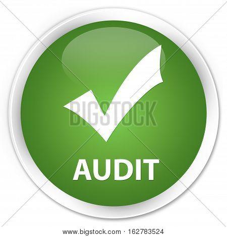 Audit (validate Icon) Premium Soft Green Round Button