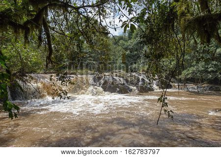 Small fast river in Kakamega Forest. Kenya, Africa