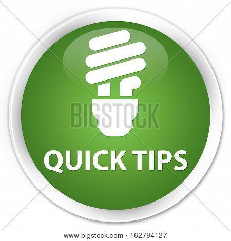 Quick Tips (bulb Icon) Premium Soft Green Round Button