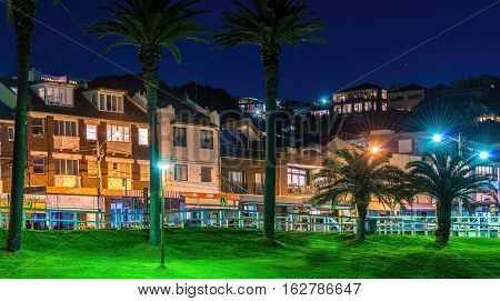 Sydney, Australia - May 28, 2016: Bronte Road viewed from Bronte Beach Park. Night image featuring shops and residential apartments that line this coastal shoreline.