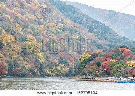 Colorful autumn forest and river in Arashiyama Kyoto Japan