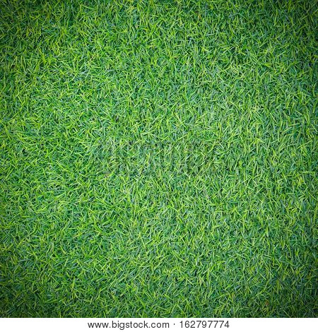 Green grass texture or green grass background for design. Top view of artificial green grass for golf course and soccer field. Dark edged.