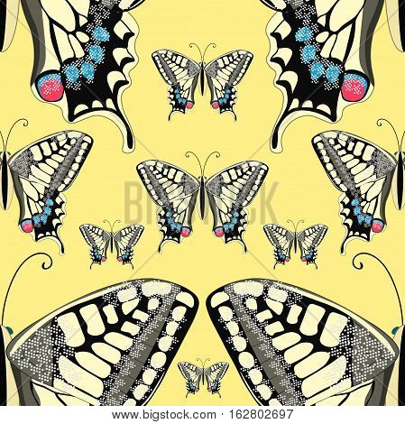 Seamless Pattern Machaon Butterfly Close Up Europe. Vector Illustration
