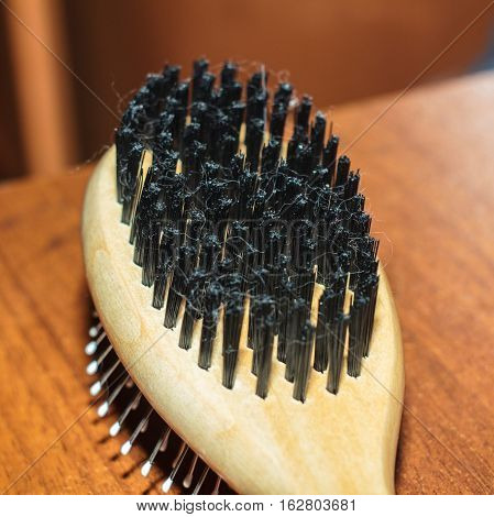 brush comb for hair on blur background
