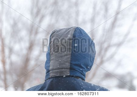 Back of young person's winter jacket hood in snowy winter weather.