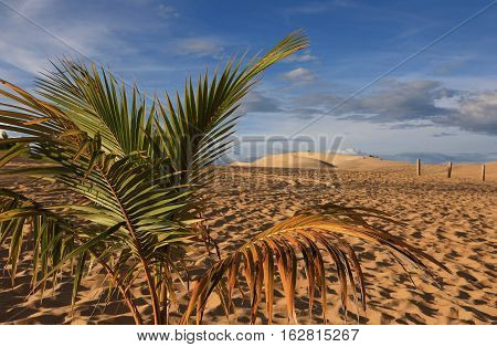 The views of the sand dunes and clouds on blue sky background. Mui Ne Vietnam