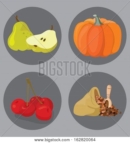 Vegetarian foods: Cereal pumpkin pear cherry. For your convenience each significant element is in a separate layer. Eps 10