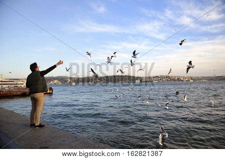 Istanbul Turkey - February 2 2014: Sea of Marmara the Bosphorus The city of Besiktas in Istanbul sunset on the beach seagulls food-giving a man.