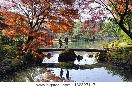 Autumn Scenery In Tokyo, Japan