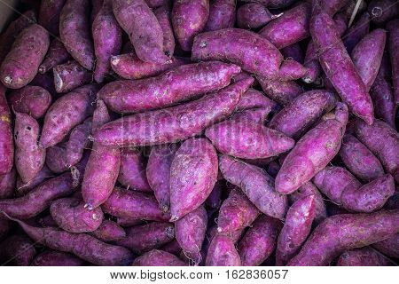 Many piles of purple sweet potato in vegetable market.